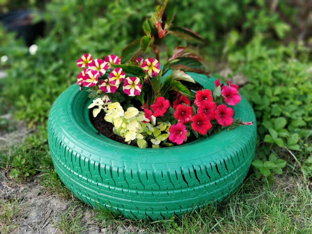 old tyre upcycling 1024x768 - #Upcycle old tyres for your plants and trees - DIY Project Idea
