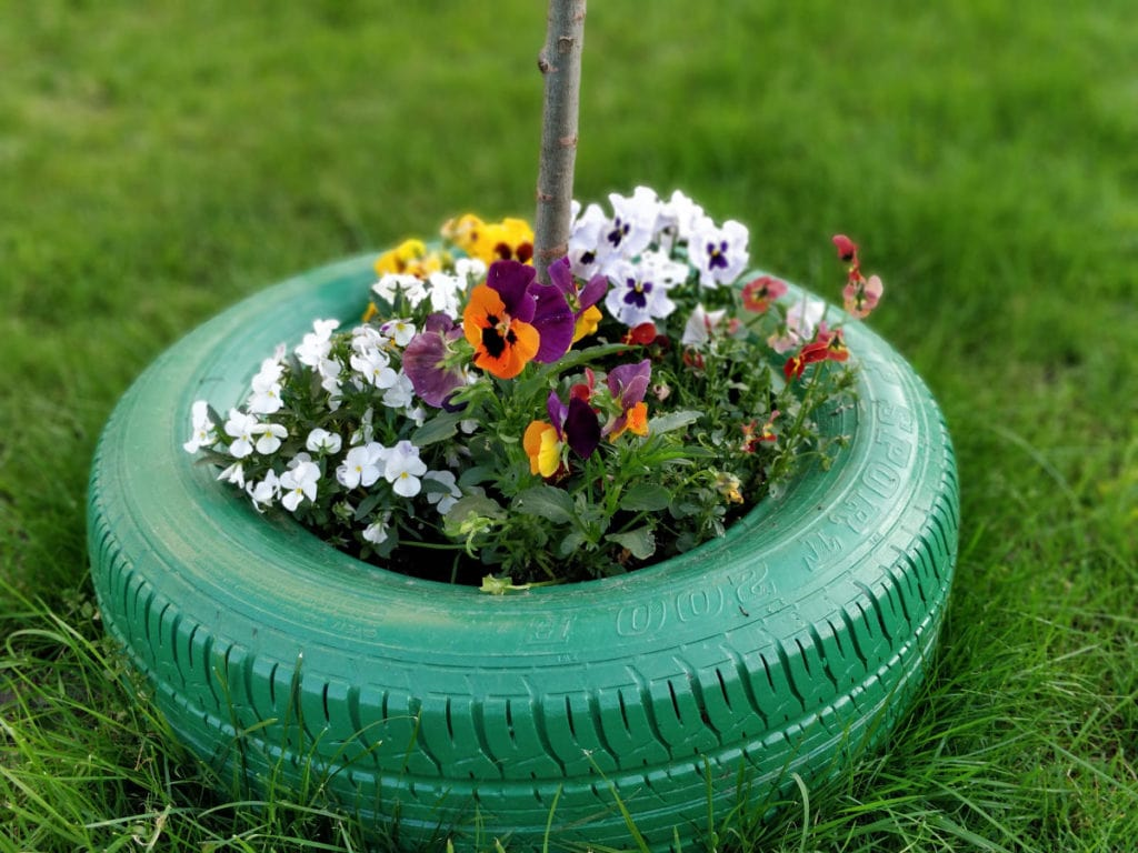 old tyre upcycling 2 1024x768 - #Upcycle old tyres for your plants and trees - DIY Project Idea