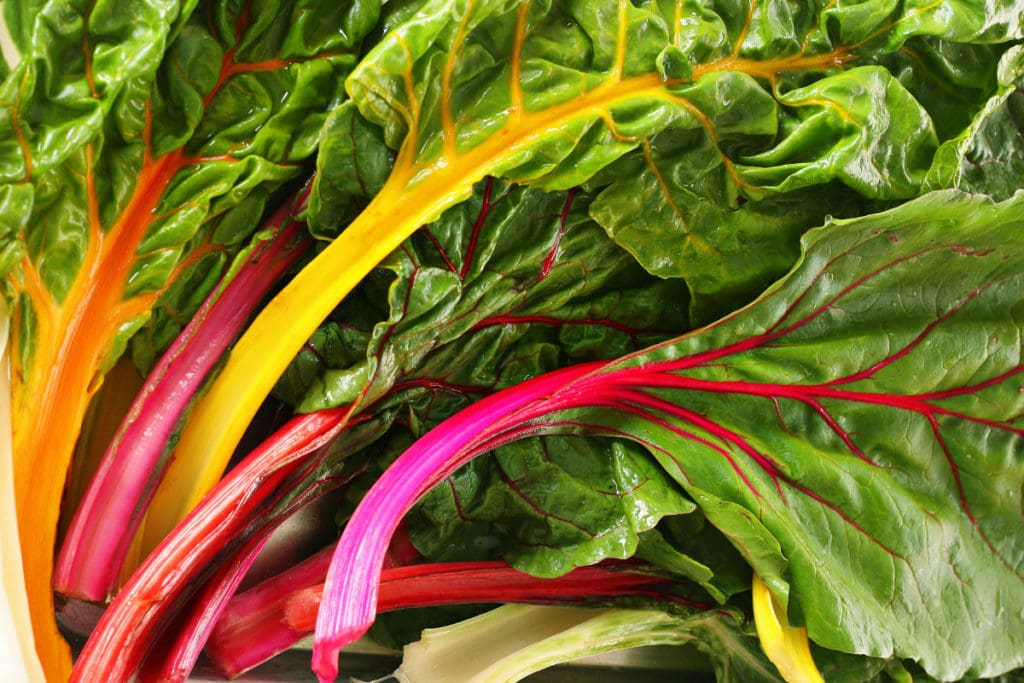 swiss chard shuttersk 1024x683 - What flower seeds to sow in May - Inspiration & Growing guide